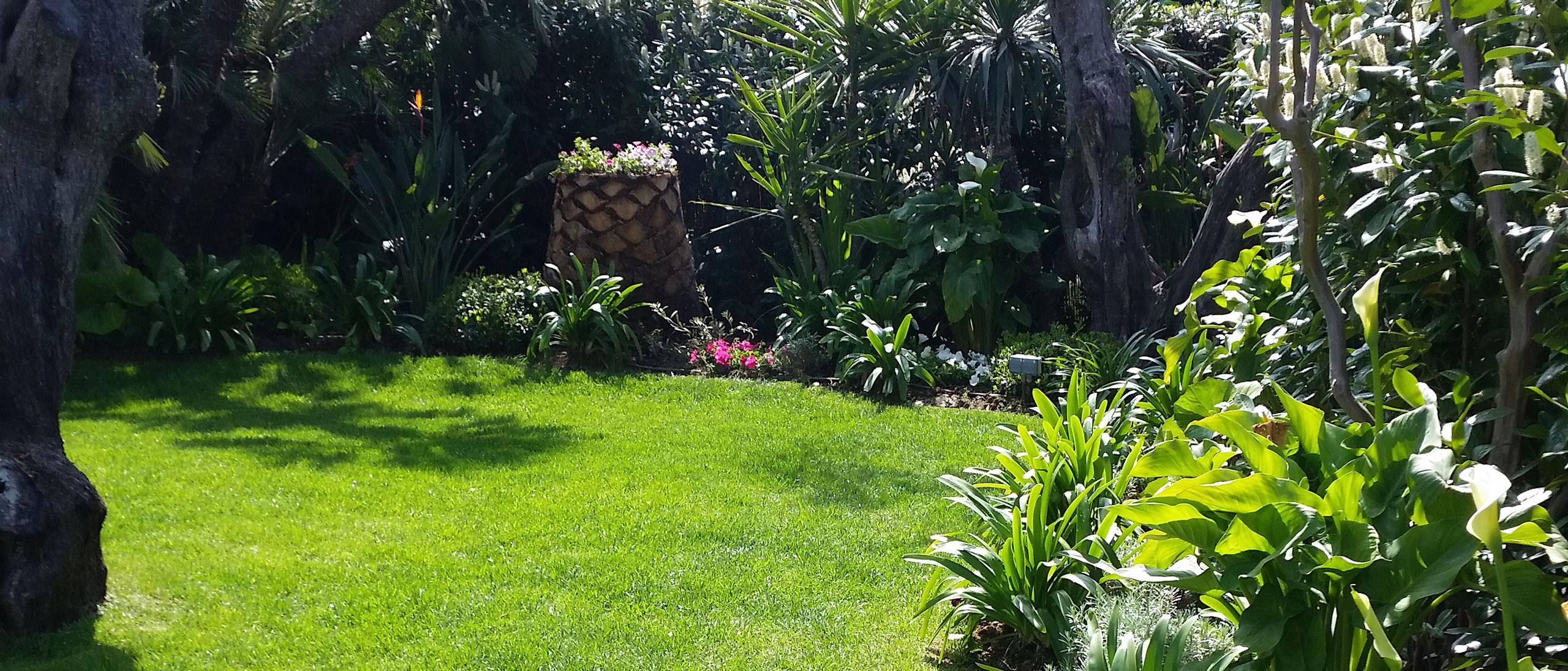 Ab jardin sp cialiste de la cr ation entretien de for Jardin creation entretien